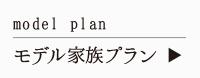 マチづくり座談会「平田107」のモデル家族プラン